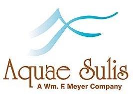 Logo for Aquae Sulis